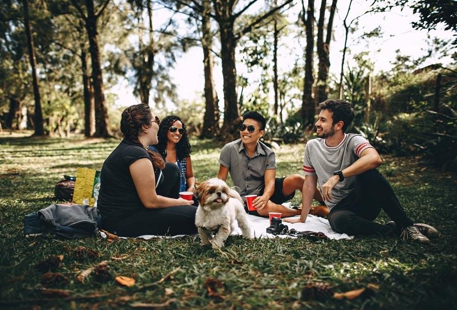 חבורה של 4 חברים עם כלב יושבים בחוץ ומחזיקים כוסות ביד