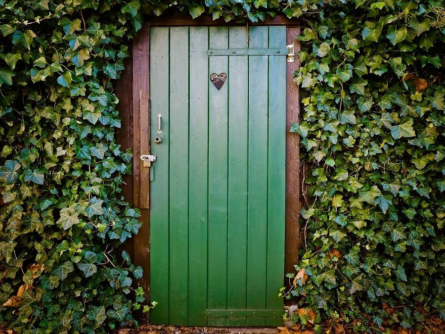 דלת כניסה מעץ עם לב על העינית מוקפת בצמחים ירוקים ויפים