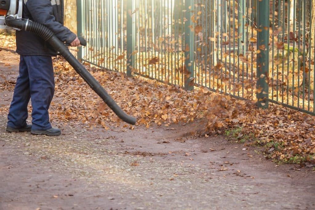 איש עם סרבל כחול כהה מנקה שלכת ליד גדר