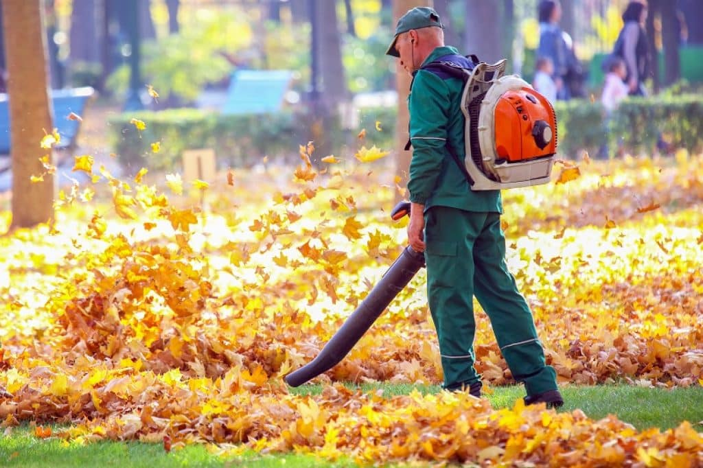 גנן עם בגדי עבודה ירוקים מנקה עם מפוח עלים